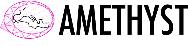 Programme ANR AMETHYST